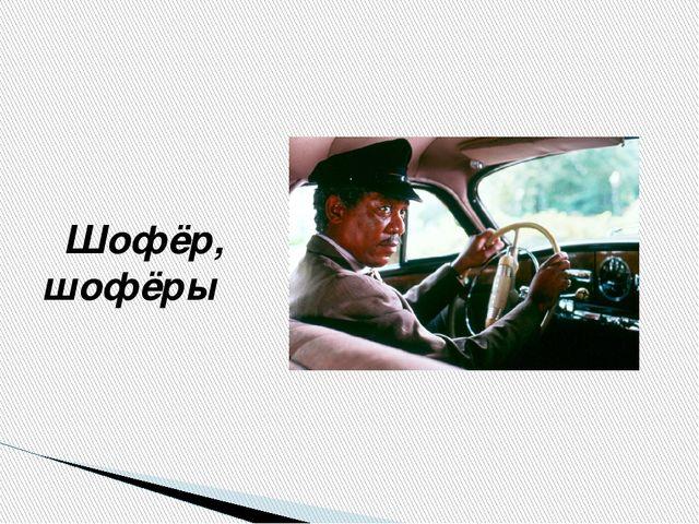 Шофёр, шофёры