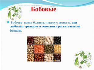 Бобовые Бобовые имеют большую пищевую ценность, они снабжают организм углевод