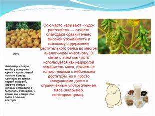 соя Сою часто называют «чудо-растением»— отчасти благодаря сравнительно высо