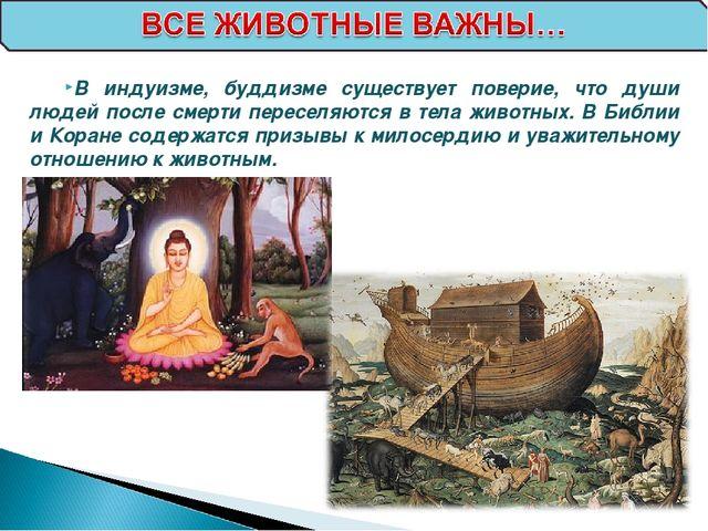 В индуизме, буддизме существует поверие, что души людей после смерти переселя...