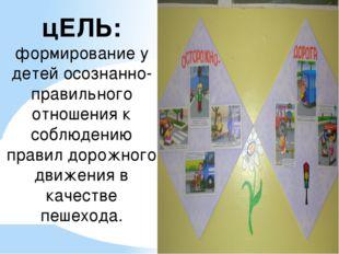 цЕЛЬ: формирование у детей осознанно-правильного отношения к соблюдению прави