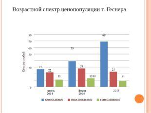 Возрастной спектр ценопопуляции т. Геснера