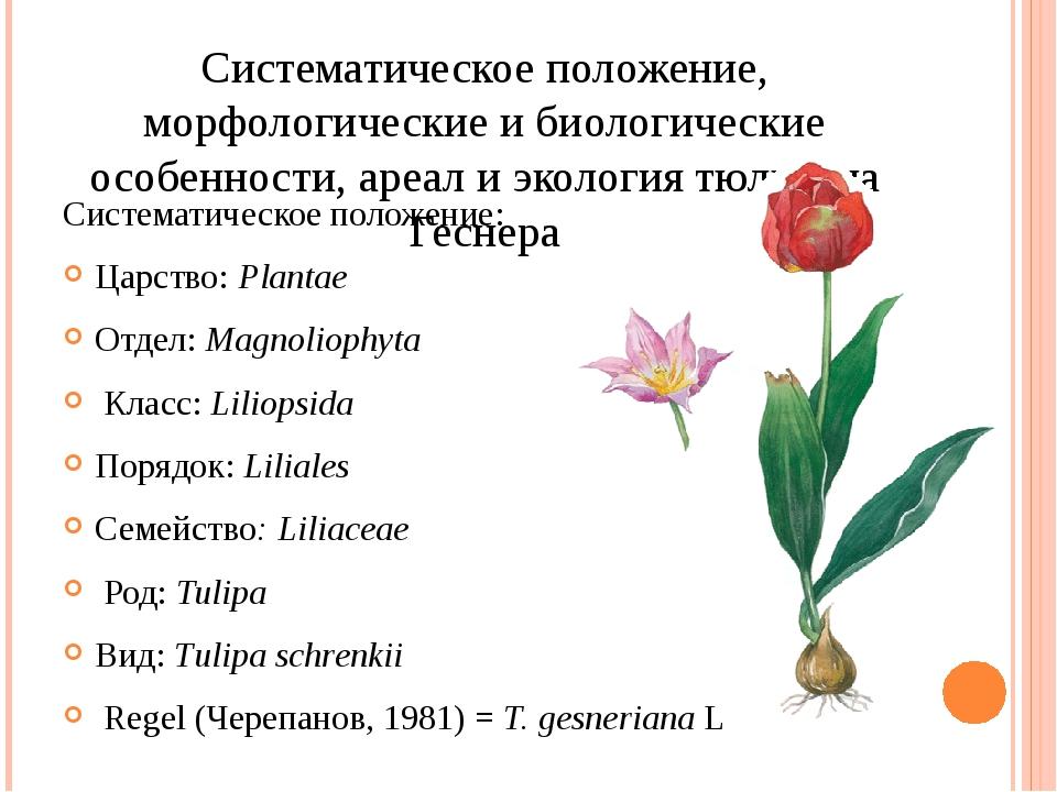 Систематическое положение, морфологические и биологические особенности, ареал...