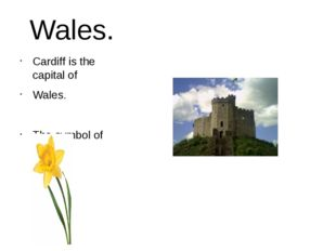 Wales. Cardiff is the capital of Wales. The symbol of Wales.