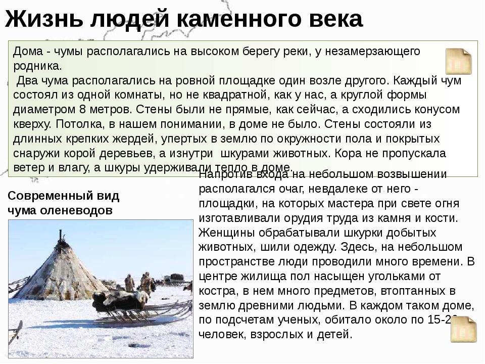 Жизнь людей каменного века Дома - чумы располагались на высоком берегу реки,...