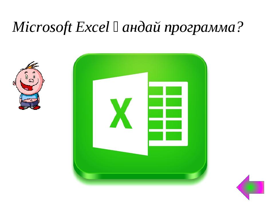 Microsoft Excel қандай программа?