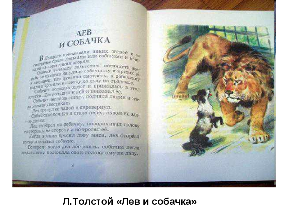 Л.Толстой «Лев и собачка»