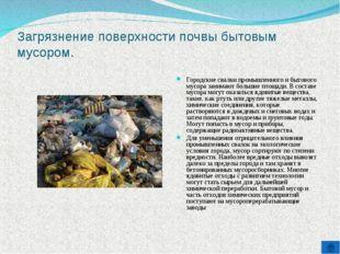 Загрязнение поверхности почвы бытовым мусором. Городские свалки промышленного