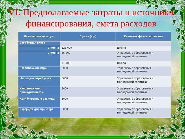 VI. Предполагаемые затраты и источники финансирования, смета расходов Наимено...