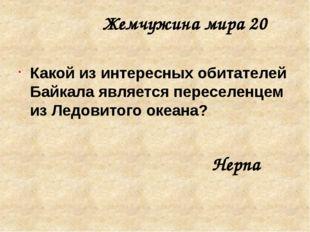 Жемчужина мира 40 Как называются стоячие волны на Байкале? Сейши