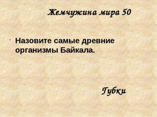 Страны и народы 30 В Средней Азии их называют «люли» или «мазанг», в Армении
