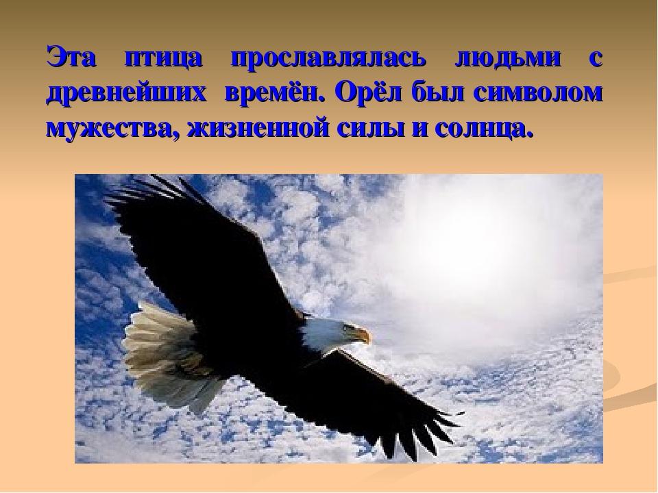 Эта птица прославлялась людьми с древнейших времён. Орёл был символом мужеств...