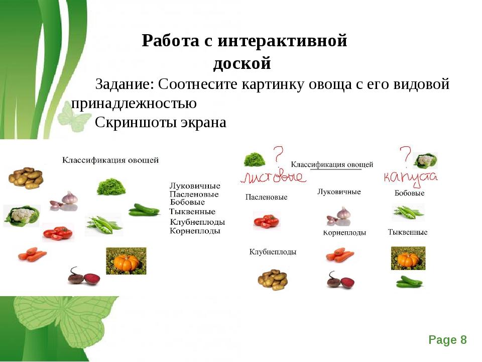 Работа с интерактивной доской Задание: Соотнесите картинку овоща с его видово...