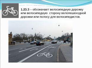 1.23.3 – обозначает велосипедную дорожку или велосипедную сторону велопешеход