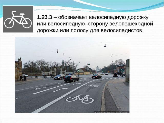 1.23.3 – обозначает велосипедную дорожку или велосипедную сторону велопешеход...