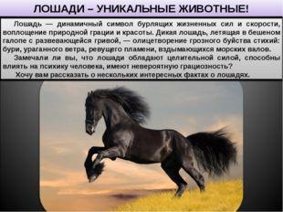 ЛОШАДИ – УНИКАЛЬНЫЕ ЖИВОТНЫЕ! Лошадь — динамичный символ бурлящих жизненных с