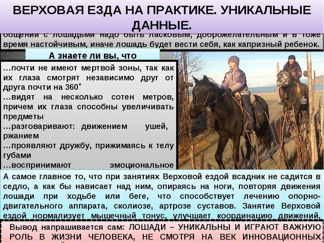 Я научился ухаживать за лошадьми, чистить и седлать их. При работе и общении...