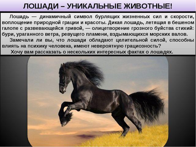 ЛОШАДИ – УНИКАЛЬНЫЕ ЖИВОТНЫЕ! Лошадь — динамичный символ бурлящих жизненных с...