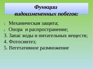 Функции видоизмененных побегов: Механическая защита; Опора и распространение;