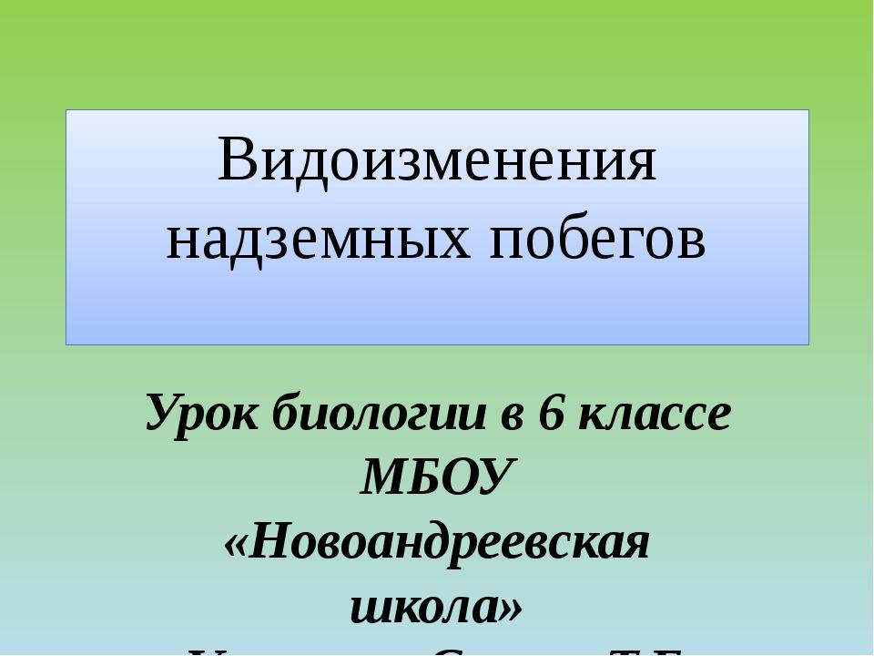 Видоизменения надземных побегов Урок биологии в 6 классе МБОУ «Новоандреевска...