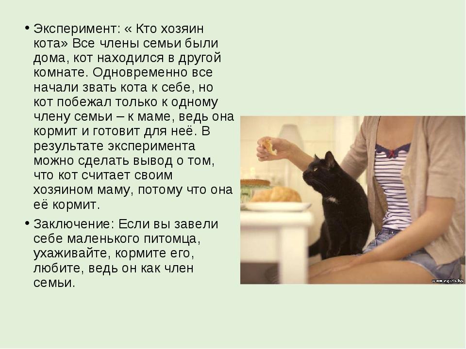 Эксперимент: «Кто хозяин кота» Все члены семьи были дома, кот находился в др...