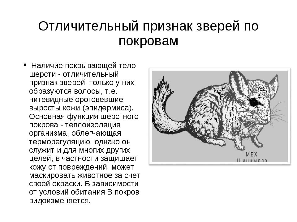 Отличительный признак зверей по покровам Наличие покрывающей тело шерсти - от...