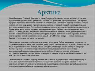 Арктика Север Евразии и Северной Америки, острова Северного Ледовитого океан