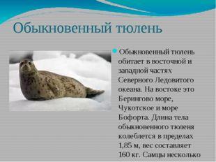 Обыкновенный тюлень Обыкновенный тюлень обитает в восточной и западной частях