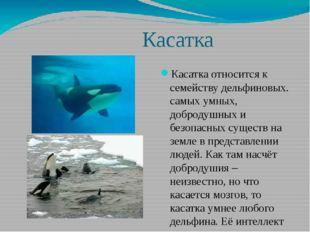 Касатка Касатка относится к семейству дельфиновых. самых умных, добродушных