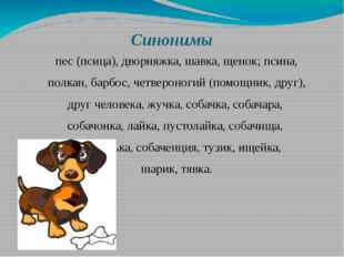 Синонимы пес (псица), дворняжка, шавка, щенок; псина, полкан, барбос, четверо