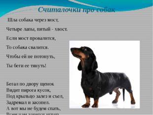 Считалочки про собак Шла собака через мост, Четыре лапы, пятый - хвост. Если