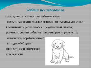 Задачи исследования: - исследовать жизнь слова собака в языке; - собрать как