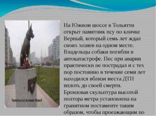 На Южном шоссе в Тольятти открыт памятник псу по кличке Верный, который семь