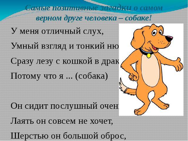 Самые позитивные загадки о самом верном друге человека – собаке! У меня отлич...
