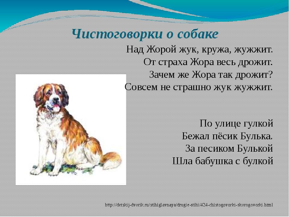 Чистоговорки о собаке Над Жорой жук, кружа, жужжит. От страха Жора весь дрожи...