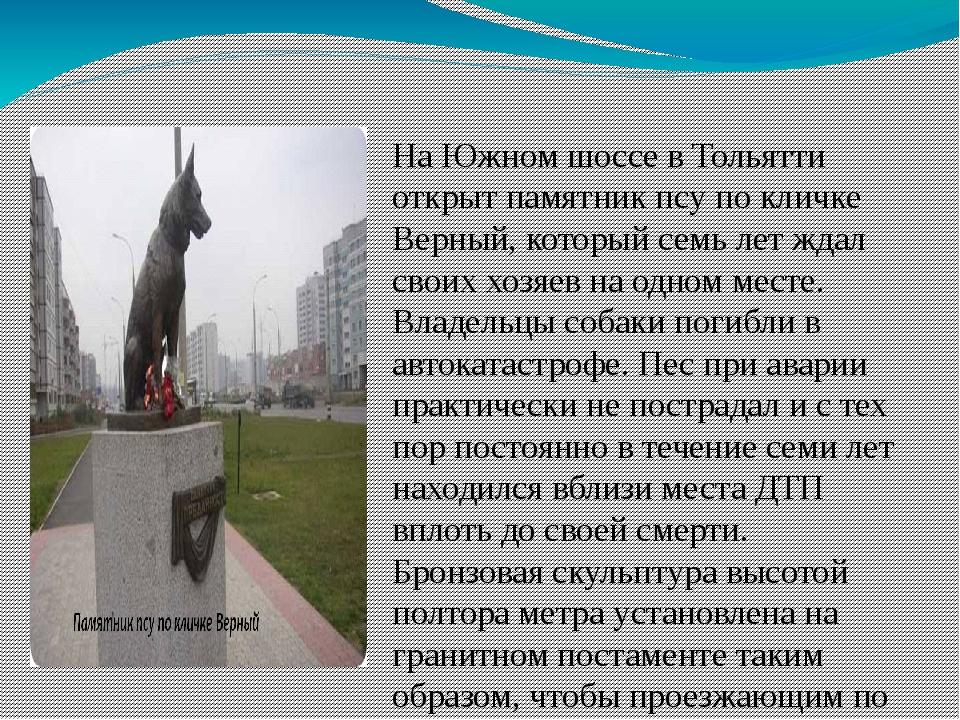 На Южном шоссе в Тольятти открыт памятник псу по кличке Верный, который семь...