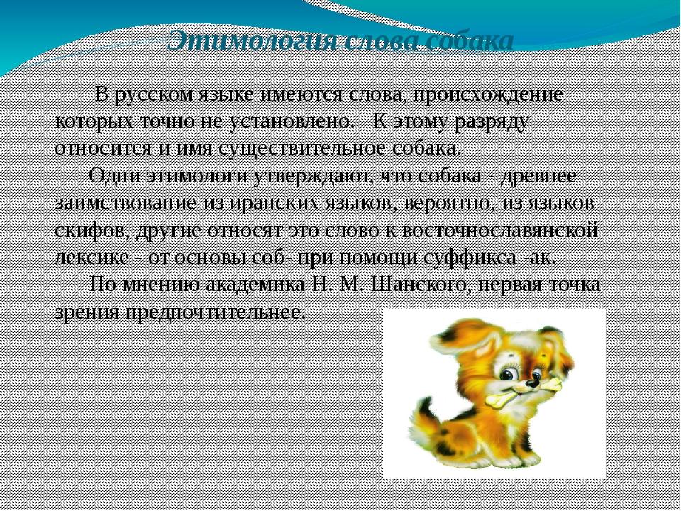 Этимология слова собака В русском языке имеются слова, происхождение которых...