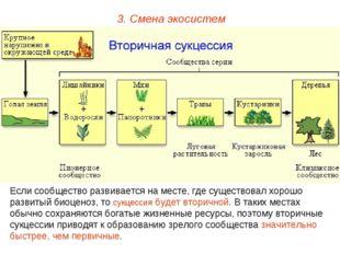 3. Смена экосистем Если сообщество развивается на месте, где существовал хоро