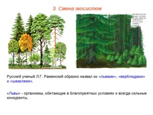 3. Смена экосистем Русский ученый Л.Г. Раменский образно назвал их «львами»,