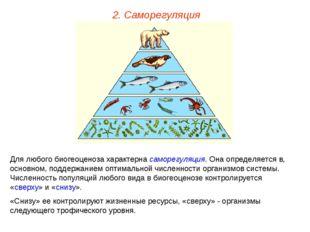 2. Саморегуляция Для любого биогеоценоза характерна саморегуляция. Она опреде