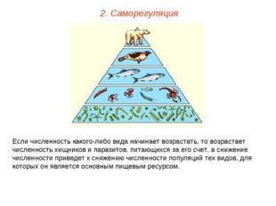 2. Саморегуляция Если численность какого-либо вида начинает возрастать, то во