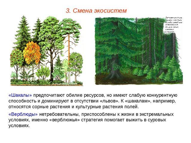 3. Смена экосистем «Шакалы» предпочитают обилие ресурсов, но имеют слабую кон...