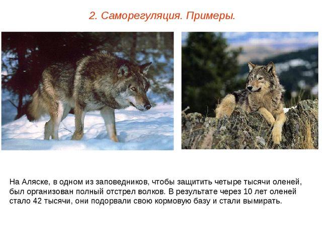 2. Саморегуляция. Примеры. На Аляске, в одном из заповедников, чтобы защитить...