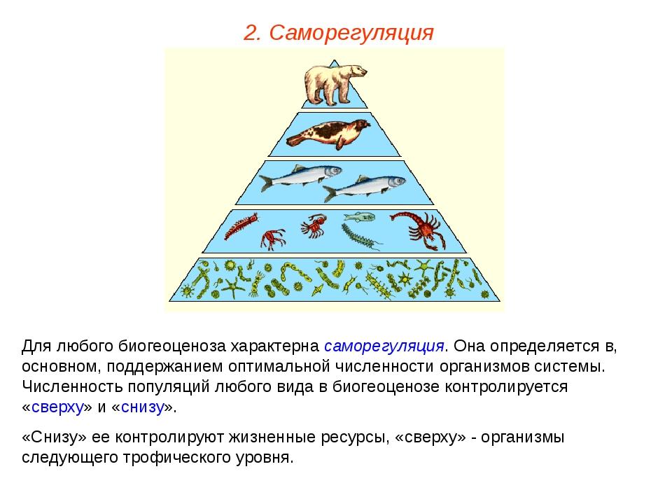 2. Саморегуляция Для любого биогеоценоза характерна саморегуляция. Она опреде...