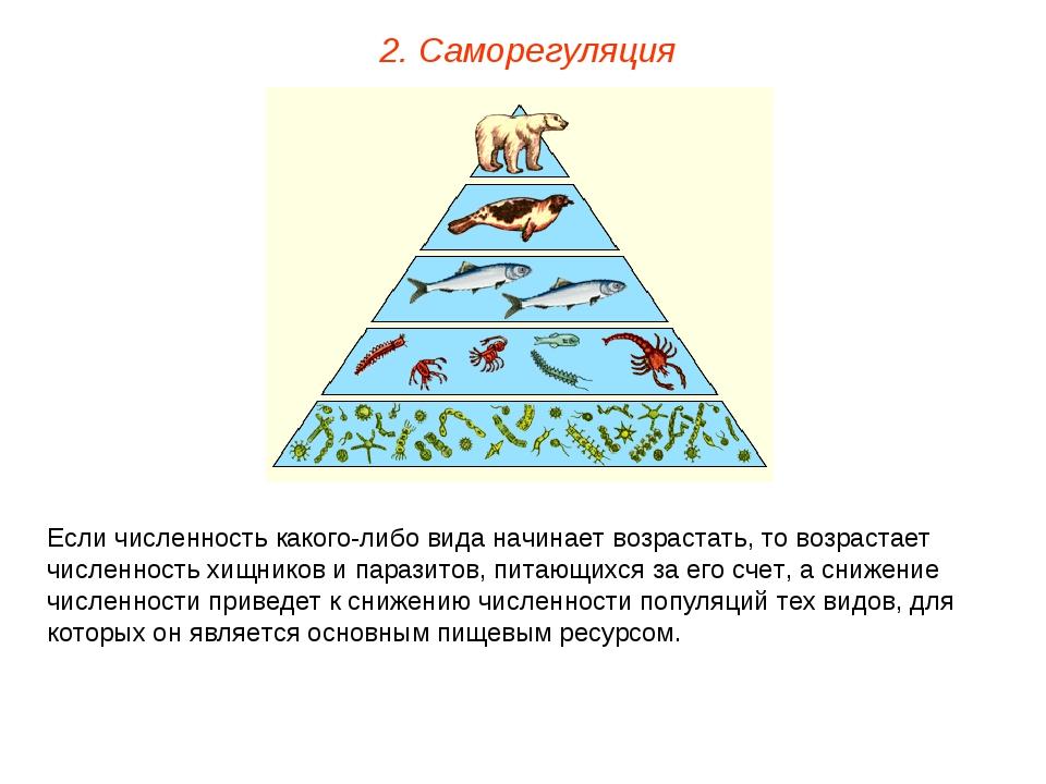 2. Саморегуляция Если численность какого-либо вида начинает возрастать, то во...