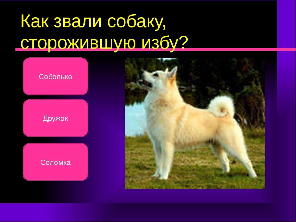 Как звали собаку, сторожившую избу? Соболько Соломка Дружок