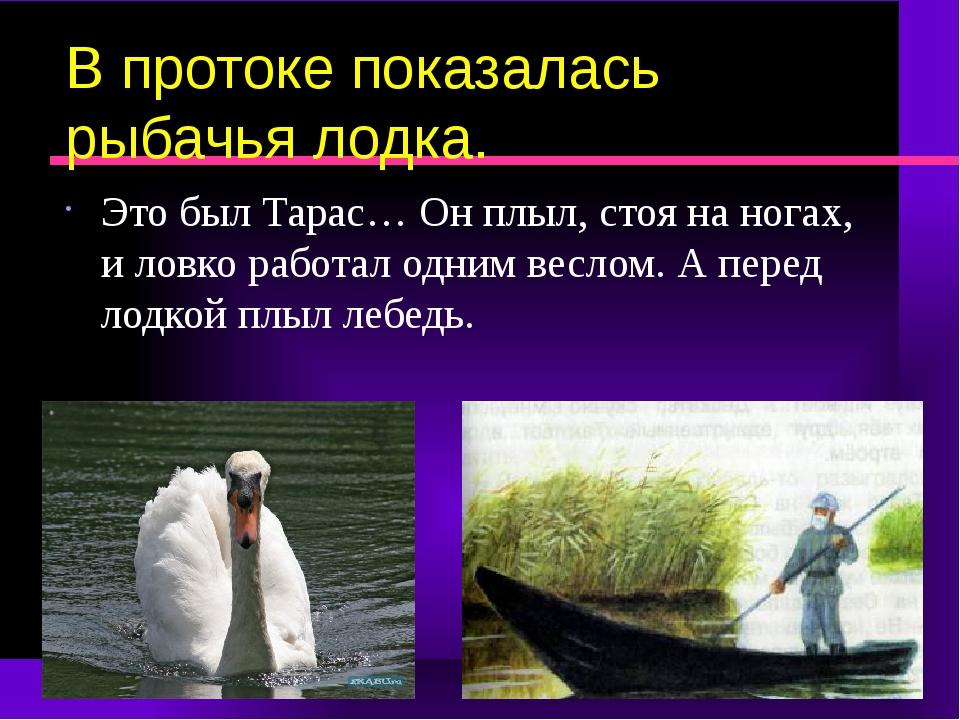 В протоке показалась рыбачья лодка. Это был Тарас… Он плыл, стоя на ногах, и...