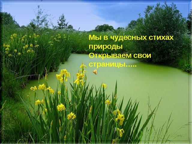 Мы в чудесных стихах природы Открываем свои страницы…..