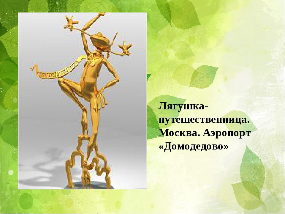. Лягушка-путешественница. Москва. Аэропорт «Домодедово»