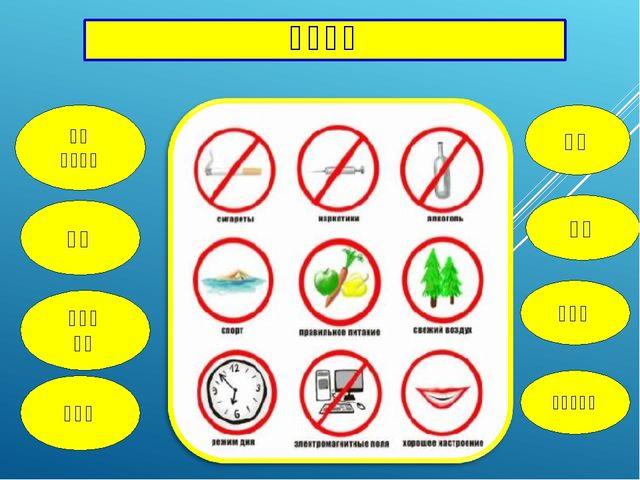 健康之路 玩电脑游戏 麻醉剂 运动 呼吸 新鲜空气 抽烟 啤酒 规范的 食物 好心情